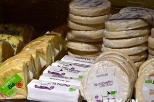 FAO: Giá lương thực thế giới giảm nhẹ trong tháng Sáu