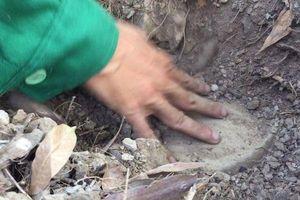Vụ 300 xác thai nhi trong nhà máy rác Cà Mau: Mẫu giám định trong hũ sành là xương người