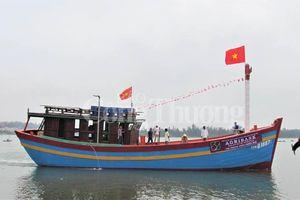 Thừa Thiên Huế chưa có tàu cá vi phạm khai thác thủy sản trái phép