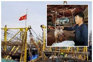 Trung Quốc thay đổi phương thức nhập khẩu mực khô: Quảng Nam cầu cứu các bộ, ngành