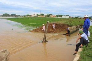Mưa lớn, vỡ kênh gây ngập lụt ở Nghệ An
