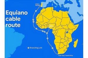 Google và Facebook phủ hệ thống cáp quang toàn châu Phi