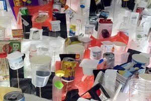 Triển lãm sắp đặt về rác kêu gọi chung tay giảm rác thải