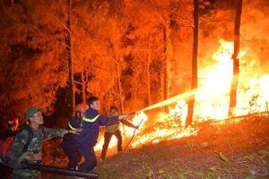 Hà Tĩnh khen thưởng các doanh nghiệp tham gia chữa cháy rừng