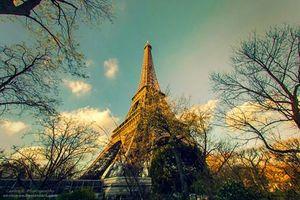 Vì sao tuyệt đối không được chụp ảnh tháp Eiffel vào ban đêm?