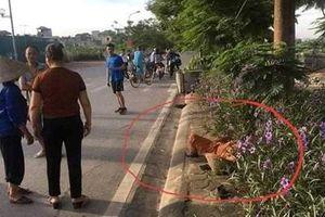 Tạm giữ tài xế taxi đâm tử vong nữ lao công ở Hà Nội rồi bỏ trốn