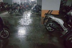 Nước thải hôi thối chảy lênh láng hầm gửi xe khu đô thị Thanh Hà, nhiều cư dân bức xúc