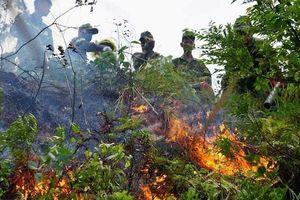 Cháy rừng tự nhiên ở Đà Nẵng