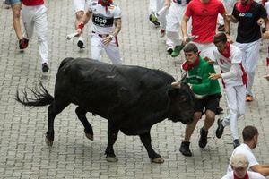 Hai người bị húc trong lễ hội đua bò 'đùa với tử thần' ở Tây Ban Nha