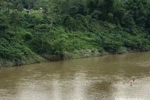 Nghệ An: Nhóm trẻ bất lực nhìn bé gái 7 tuổi bị dòng nước cuốn trôi