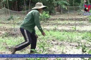 Dân hiến đất làm đường nhưng phải chịu cảnh ngập lụt