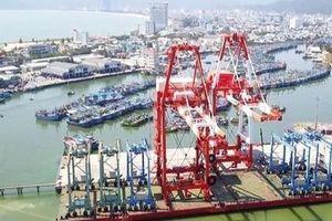 Cảng Quy Nhơn tăng trưởng thế nào sau khi 'bán' cho Công ty Hợp Thành?