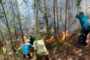 Cháy lớn tại Hà Tĩnh, huy động hàng trăm người dập lửa