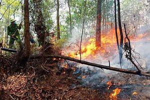 Lại cháy rừng nhiều giờ ở Hà Tĩnh