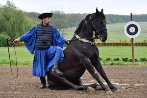 Kỵ sĩ cao bồi Hungary trổ tài với ngựa phi nước đại