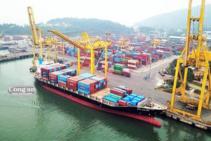 Cảng Đà Nẵng: Duy trì tăng trưởng trong áp lực cạnh tranh
