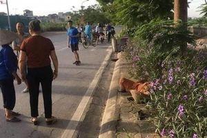 Gia cảnh của nữ lao công ở Hà Nội bị lái xe taxi tông tử vong: Thân cò lặn lội nuôi con