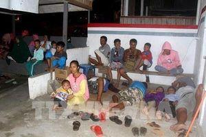 Indonesia: Động đất mạnh 7,1 độ tại đảo Sulaweisi