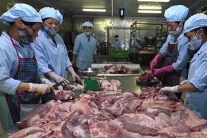 Dự báo sản xuất thịt lợn ở Trung Quốc sẽ tăng trở lại sau năm 2020