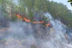 Hà Tĩnh: Tiếp tục xảy ra cháy rừng, huy động lực lượng khẩn trương dập lửa