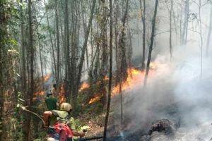 Hà Tĩnh: Cháy lớn tại núi Nầm, hàng trăm người tích cực dập lửa