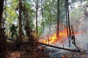 Lại xảy ra cháy rừng tại núi Nầm - Hà Tĩnh