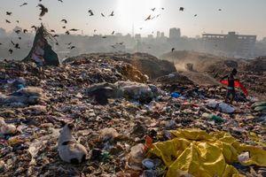 Rác thải nhựa đe dọa nhân loại