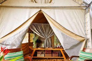 Cắm trại kiểu 'chanh sả' tại resort giữa lòng rừng núi Tây Nguyên