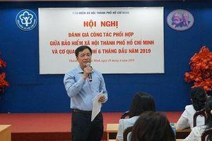 TP. Hồ Chí Minh: Số người tham gia BHXH, BHYT tăng 5,49%