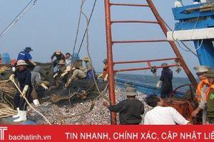 Hà Tĩnh xử lý hàng chục tàu cá vi phạm khai thác hải sản