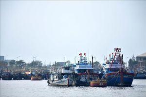 Nan giải 'bài toán' thiếu lao động biển