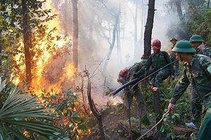 Gửi những người lính cứu rừng trong cuộc chiến với 'quỷ lửa'