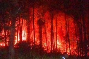 Khoảng 3ha rừng thông cạnh lăng vua Khải Định bị lửa thiêu rụi