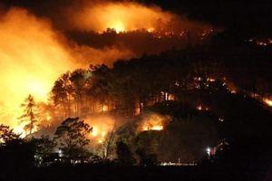 Rừng ở Hà Tĩnh tiếp tục cháy, dân vội vã sơ tán trong đêm