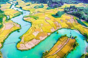 Ngao du vùng nước non Cao Bằng