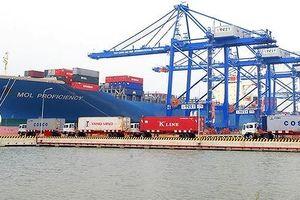 Rà soát bất cập trong quy hoạch cảng biển