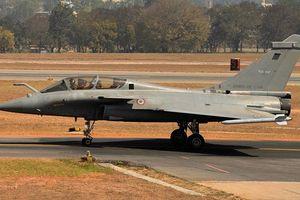 Tiêm kích tối tân Rafale của Ấn Độ bị… bồ câu đe dọa