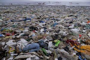 Ô nhiễm rác thải nhựa: Hiểm họa đe dọa nhân loại