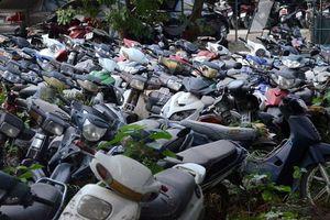 Hơn 1000 phương tiện vi phạm giao thông được bán đấu giá ở Hà Nội