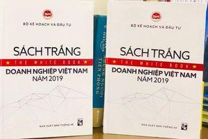Lần đầu công bố Sách trắng Doanh nghiệp Việt Nam 2019