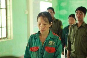 Khởi tố người phụ nữ đốt cỏ vô tình gây cháy rừng nghiêm trọng ở Hà Tĩnh