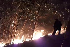 Cháy rừng lớn tại Quảng Nam, thiệt hại hàng trăm ha