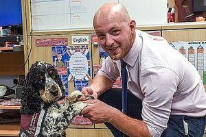 Anh: Chú chó thông minh giúp thầy giáo khiếm thính tự tin đứng trên bục giảng