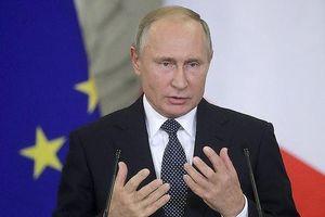 Tổng thống Nga lên tiếng về đề nghị gặp mặt của Tổng thống Ukraine
