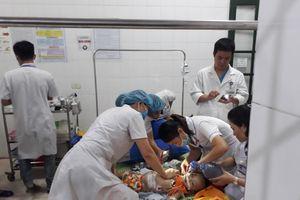 Nghệ An: Chó becgie sổng chuồng cắn bé gái 22 tháng tuổi tử vong