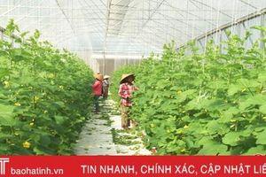 Hà Tĩnh phân bổ gần 282 tỷ đồng khuyến khích phát triển nông nghiệp, nông thôn