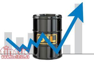 Giá dầu châu Á đạt đỉnh của 6 tuần