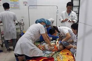 Nghệ An: Chó béc-giê sổng chuồng cắn chết cháu bé 22 tháng tuổi
