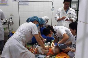 Bé gái 22 tháng tuổi ở Nghệ An bị chó sổng chuồng cắn tử vong