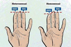 Xem ngón tay áp út của đàn ông, biết ngay người đó 'khỏe hay yếu', chung thủy hay lăng nhăng